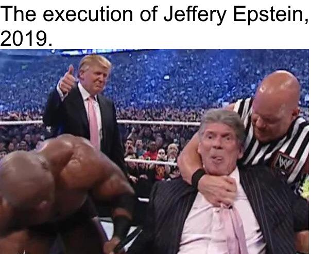 The%20execution%20of%20Jeffery%20Epstein%2C%202019