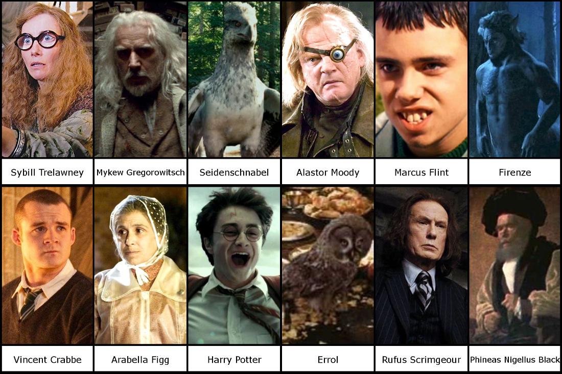 Euer Top Charakter Aus Harry Potter Turniermodus Filme Kino Forum Rocket Beans Tv