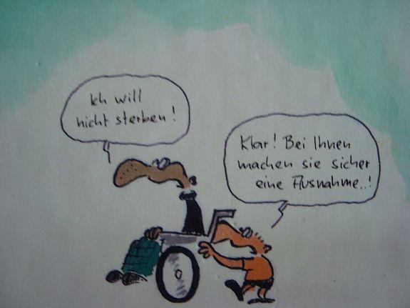 164068983_walter-moers-der-alte-sack-ein-kleines-arschloch-andere-